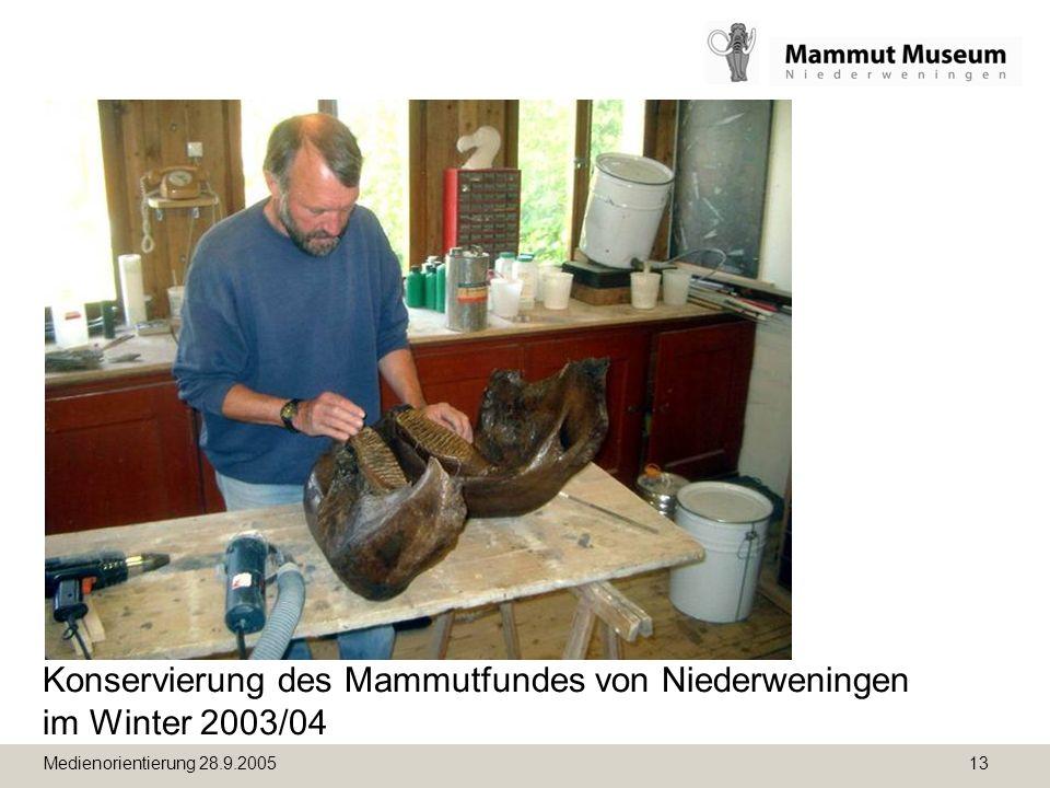 Konservierung des Mammutfundes von Niederweningen im Winter 2003/04