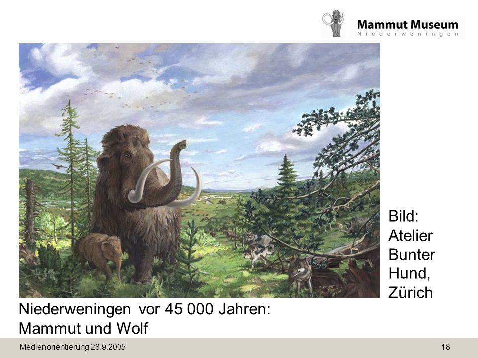Bild: Atelier Bunter Hund, Zürich