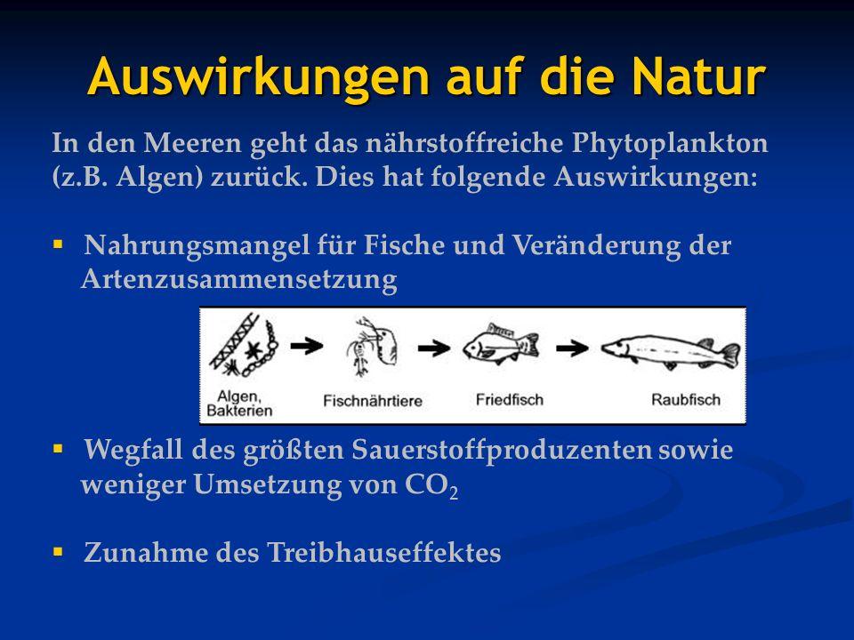 Auswirkungen auf die Natur