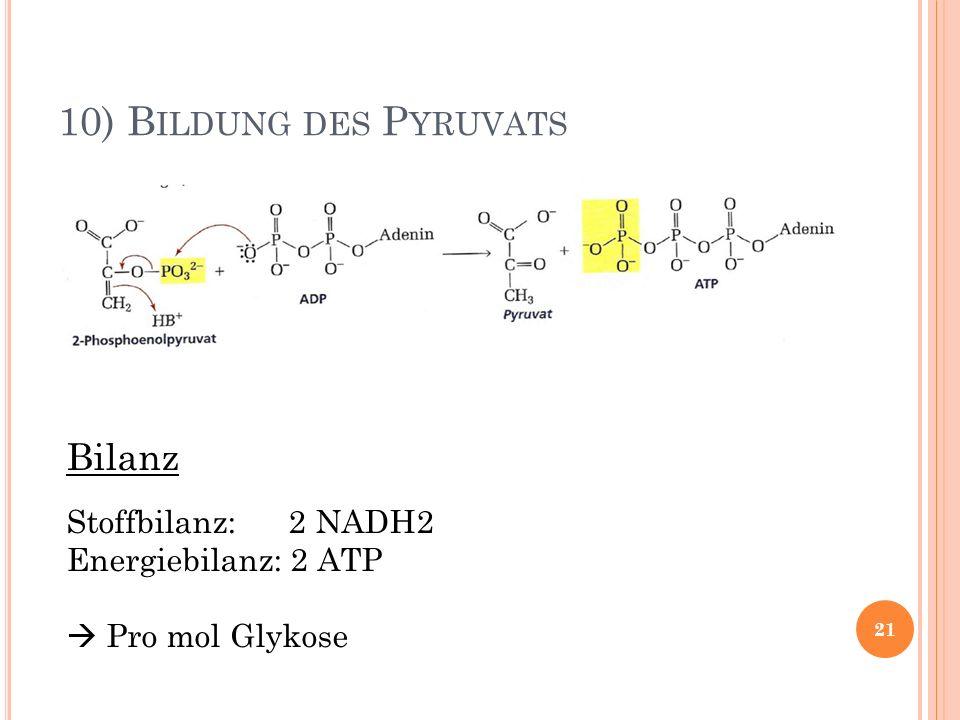10) Bildung des Pyruvats Bilanz Stoffbilanz: 2 NADH2