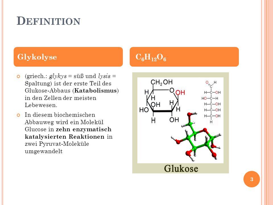 Definition Glykolyse C6H12O6