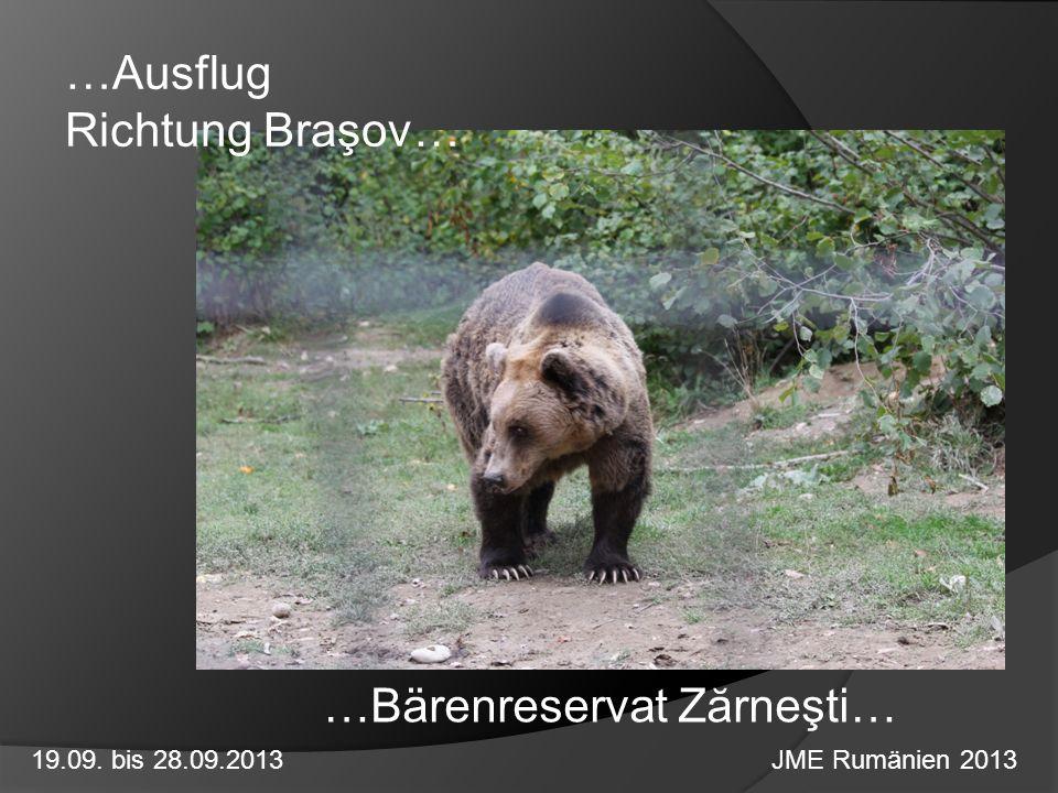 …Ausflug Richtung Braşov…