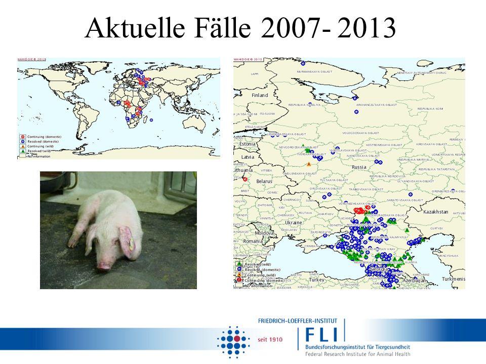 Aktuelle Fälle 2007- 2013