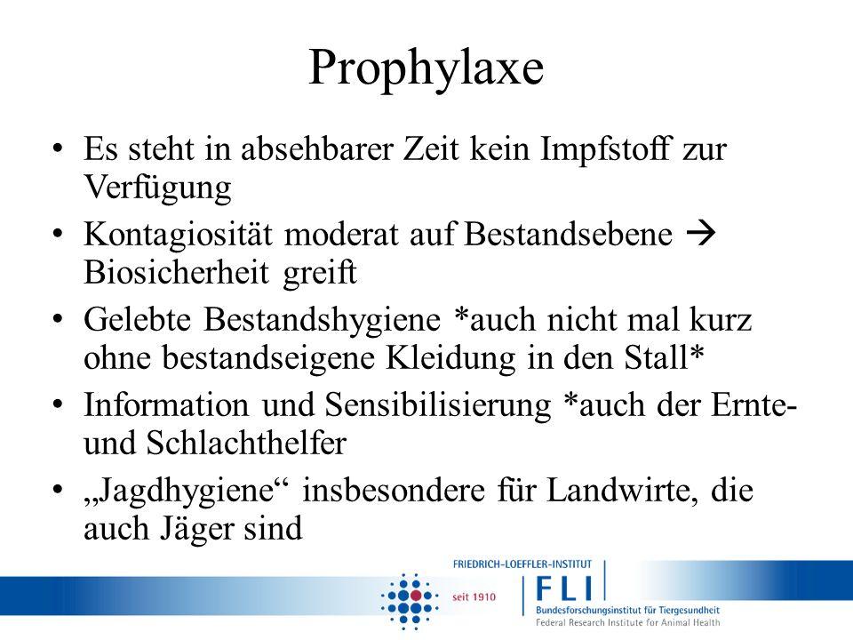 Prophylaxe Es steht in absehbarer Zeit kein Impfstoff zur Verfügung