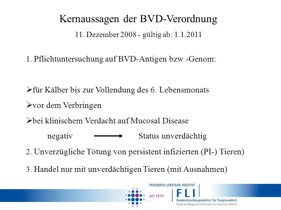 Kernaussagen der BVD-Verordnung