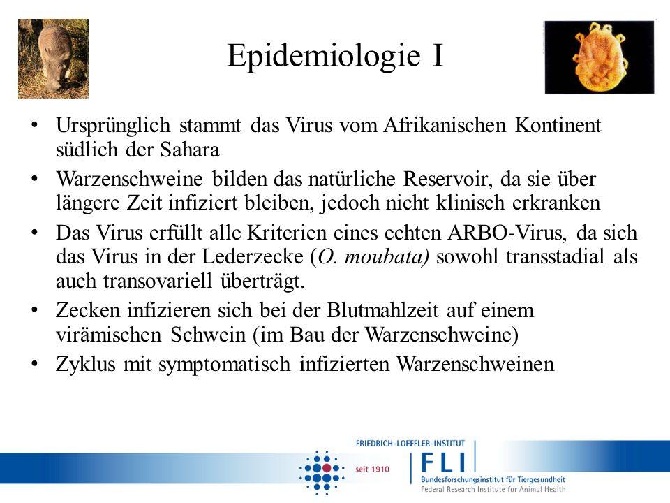 Epidemiologie I Ursprünglich stammt das Virus vom Afrikanischen Kontinent südlich der Sahara.