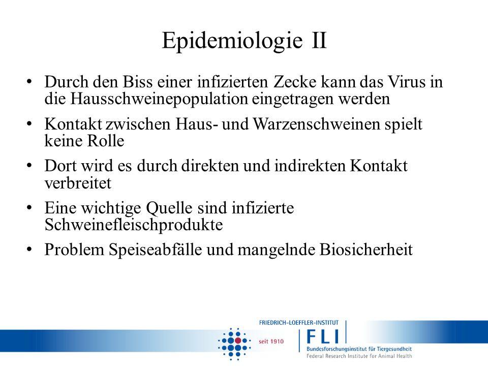 Epidemiologie II Durch den Biss einer infizierten Zecke kann das Virus in die Hausschweinepopulation eingetragen werden.