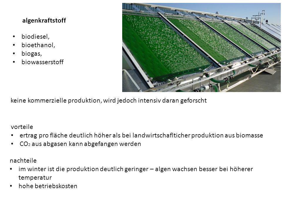 algenkraftstoff biodiesel, bioethanol, biogas, biowasserstoff. keine kommerzielle produktion, wird jedoch intensiv daran geforscht.