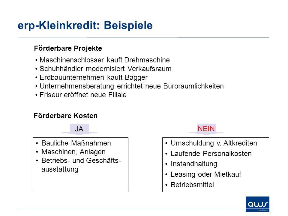 erp-Kleinkredit: Beispiele