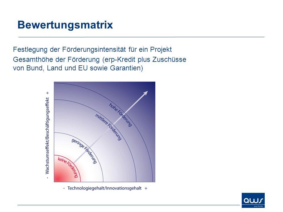 Bewertungsmatrix Festlegung der Förderungsintensität für ein Projekt