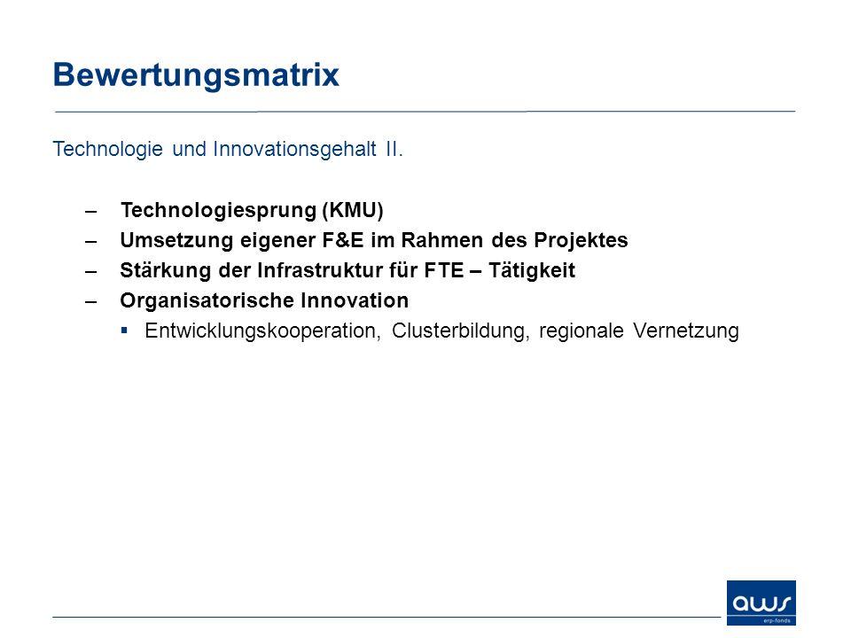 Bewertungsmatrix Technologie und Innovationsgehalt II.
