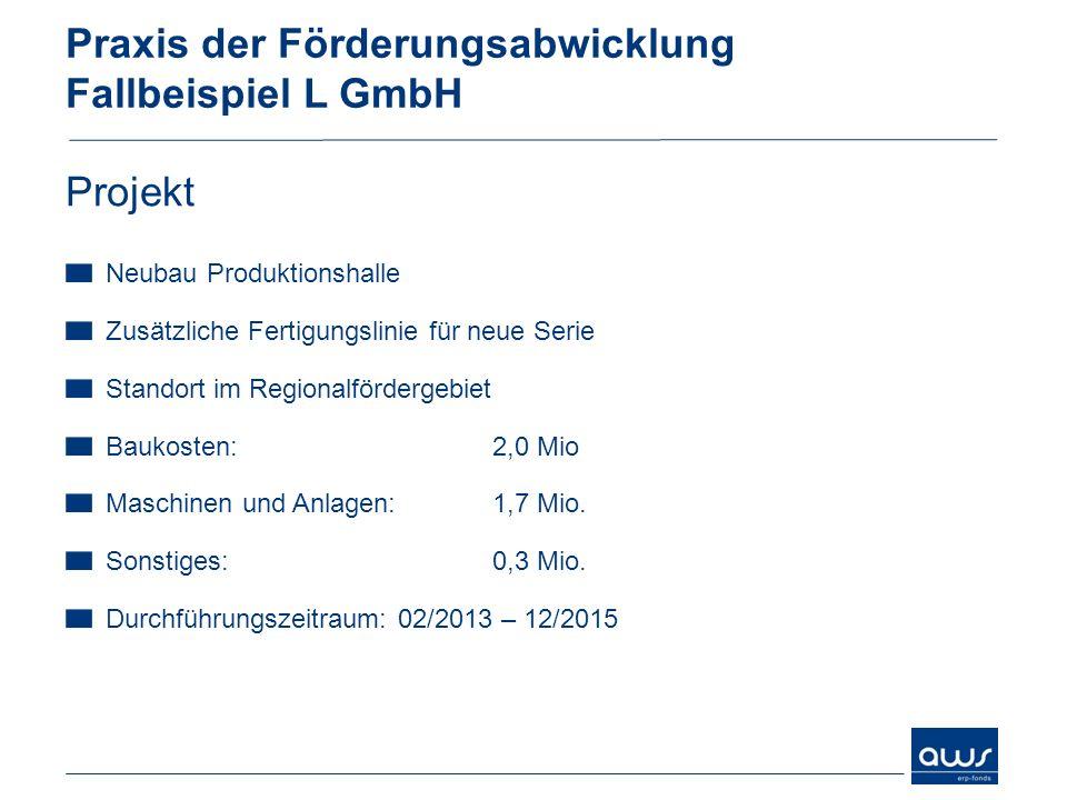 Praxis der Förderungsabwicklung Fallbeispiel L GmbH