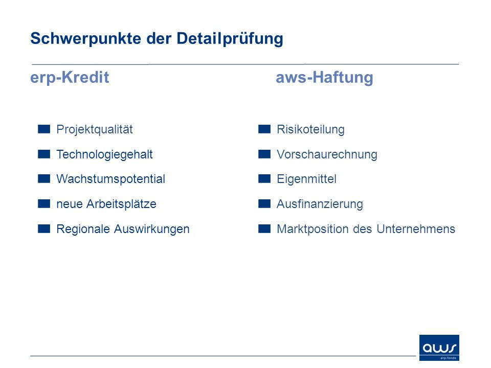 Schwerpunkte der Detailprüfung erp-Kredit aws-Haftung