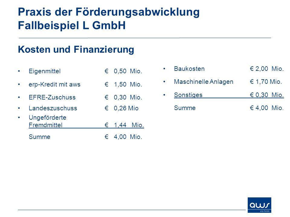 Praxis der Förderungsabwicklung Fallbeispiel L GmbH Kosten und Finanzierung