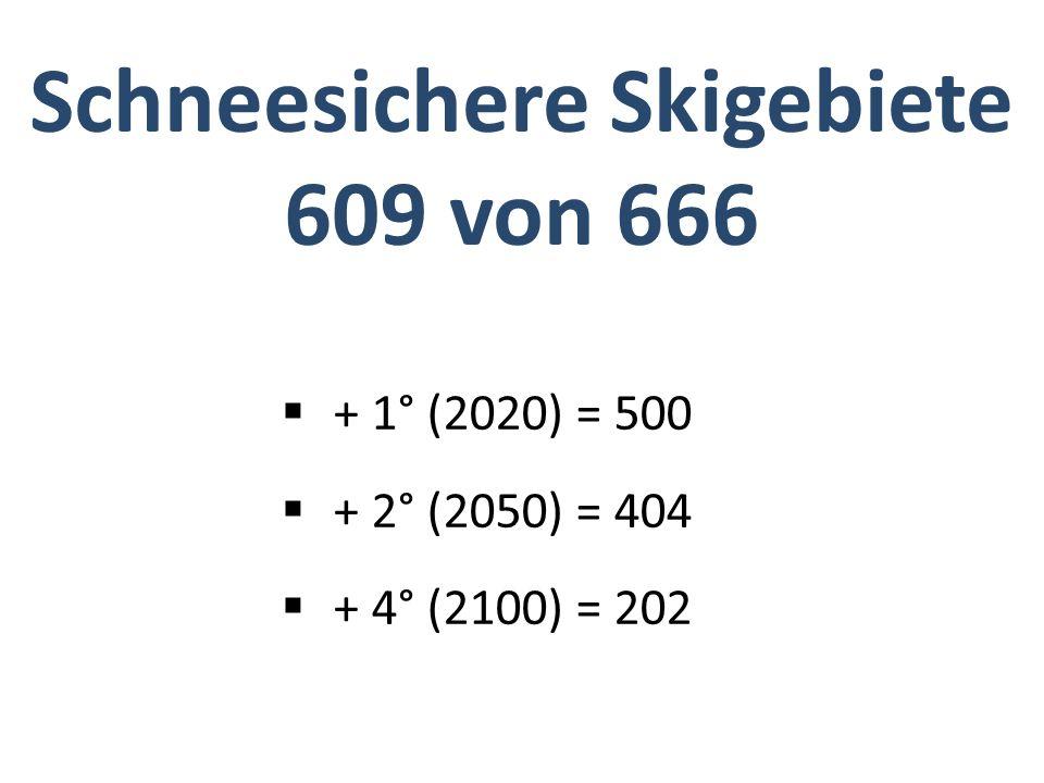Schneesichere Skigebiete 609 von 666