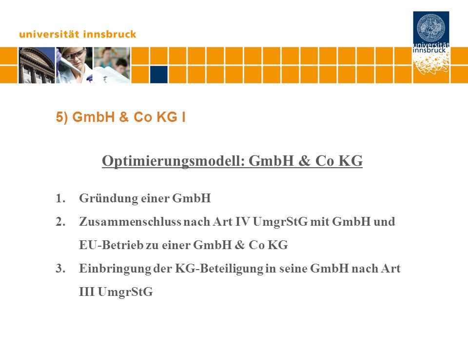 Optimierungsmodell: GmbH & Co KG