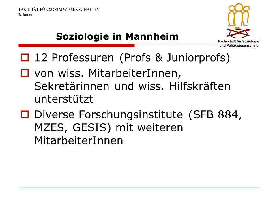 Soziologie in Mannheim