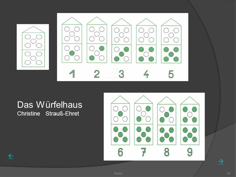 Das Würfelhaus Christine Strauß-Ehret Steibl