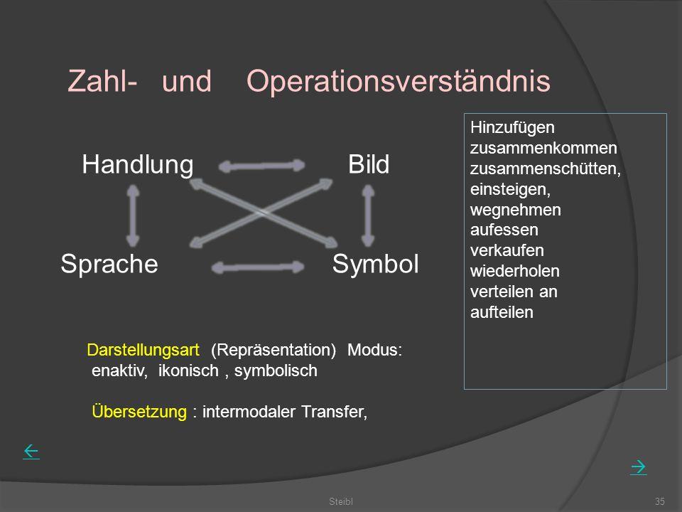 Zahl- und Operationsverständnis