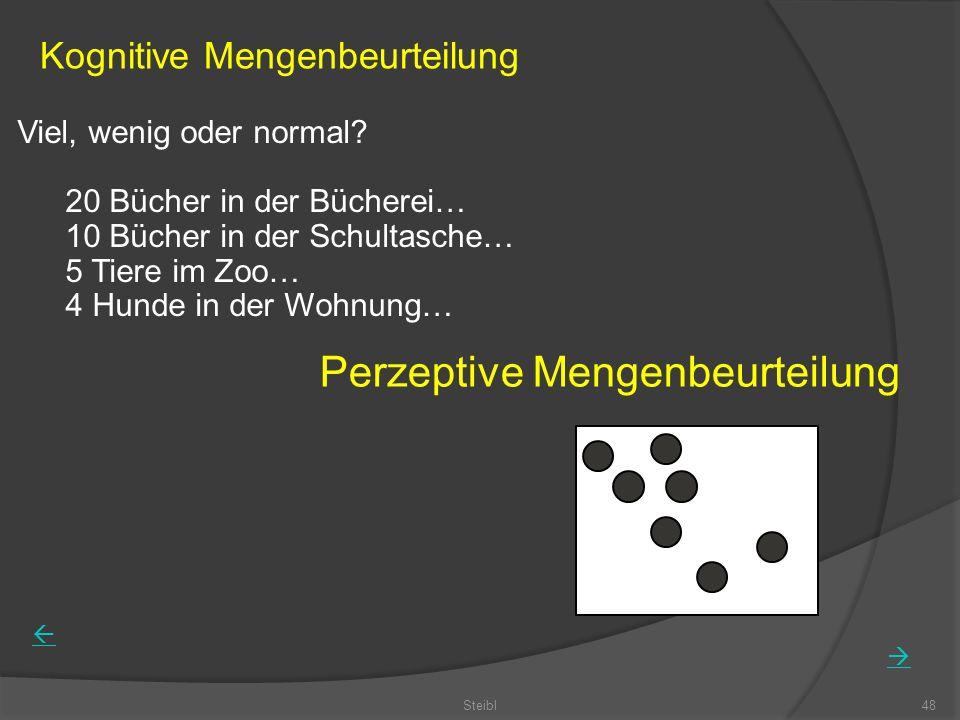 Perzeptive Mengenbeurteilung