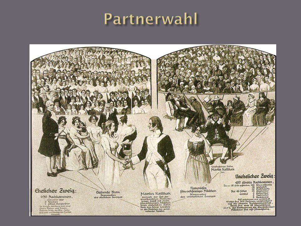 Partnerwahl