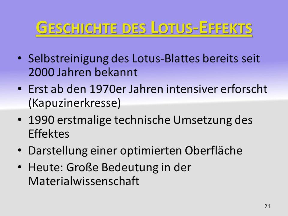 Geschichte des Lotus-Effekts