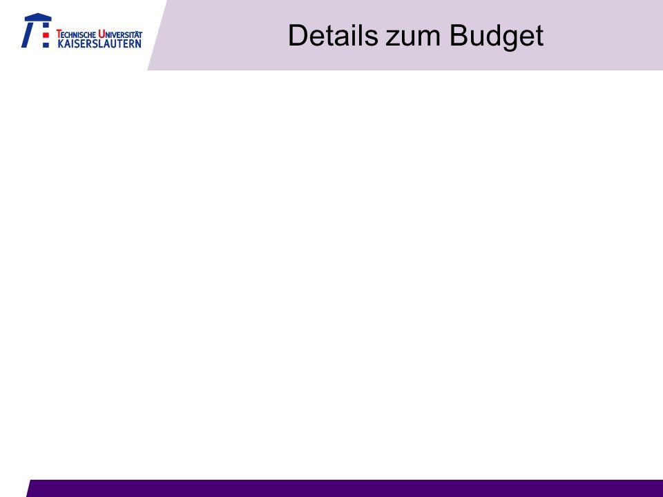 Details zum Budget