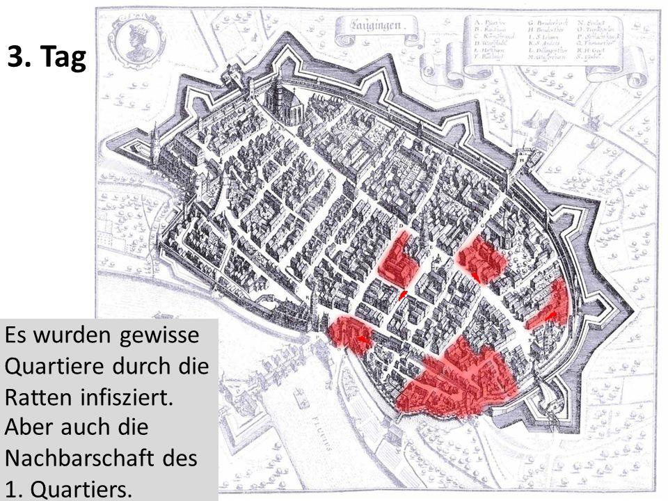 3. Tag Es wurden gewisse Quartiere durch die Ratten infisziert.