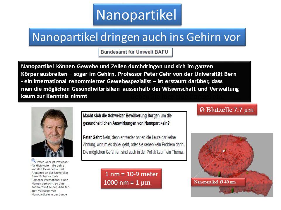 Nanopartikel Nanopartikel dringen auch ins Gehirn vor