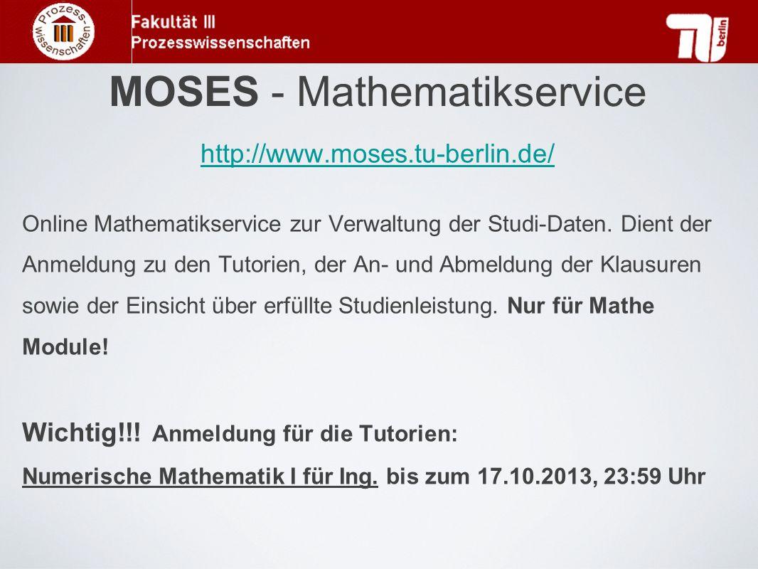 MOSES - Mathematikservice