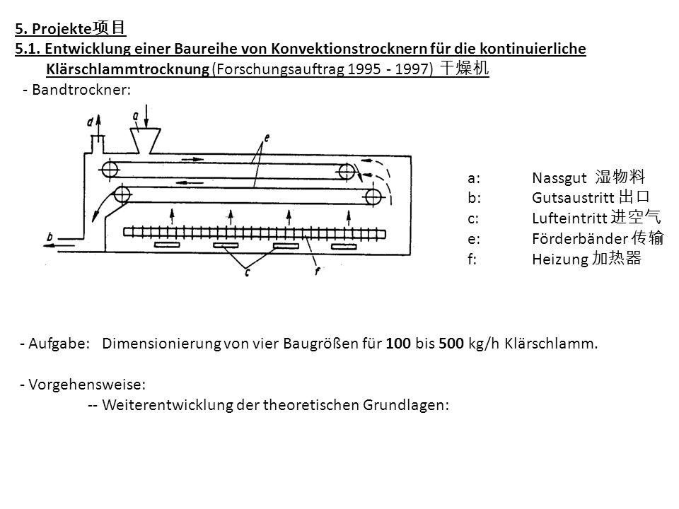5. Projekte项目 5.1. Entwicklung einer Baureihe von Konvektionstrocknern für die kontinuierliche.