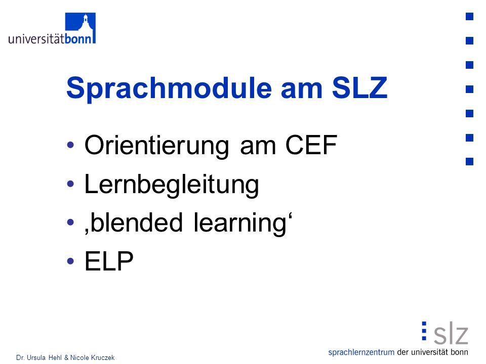 Sprachmodule am SLZ Orientierung am CEF Lernbegleitung