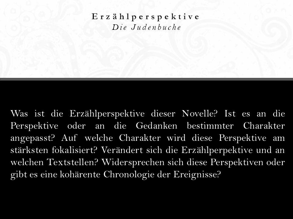 Erzählperspektive Die Judenbuche.