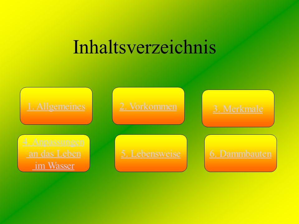Inhaltsverzeichnis 1. Allgemeines 2. Vorkommen 3. Merkmale