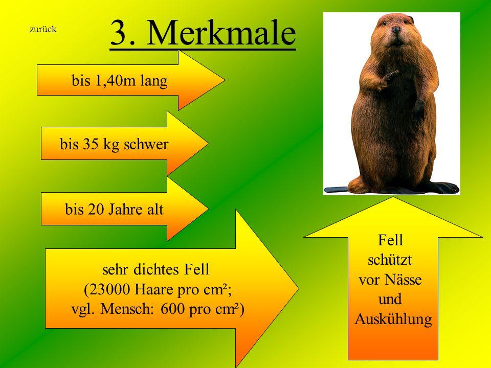 3. Merkmale bis 1,40m lang bis 35 kg schwer bis 20 Jahre alt