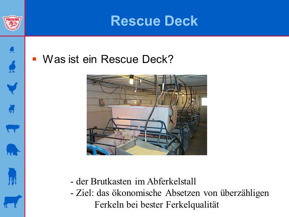 Rescue Deck Was ist ein Rescue Deck - der Brutkasten im Abferkelstall