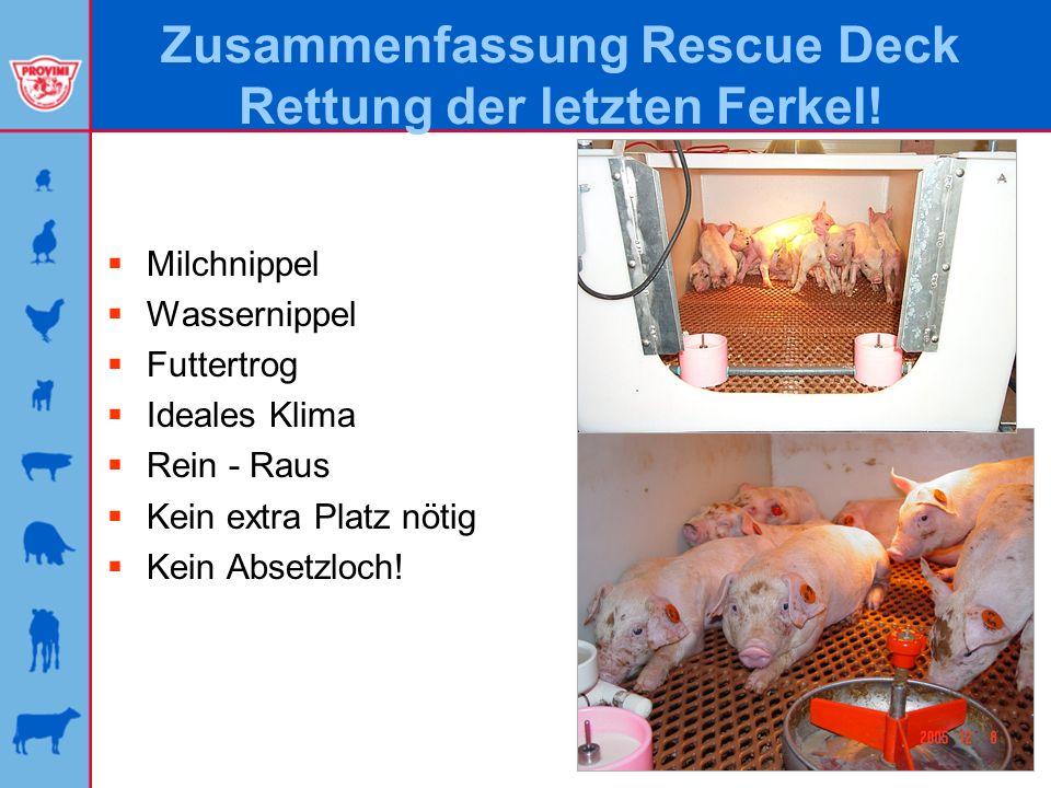 Zusammenfassung Rescue Deck Rettung der letzten Ferkel!