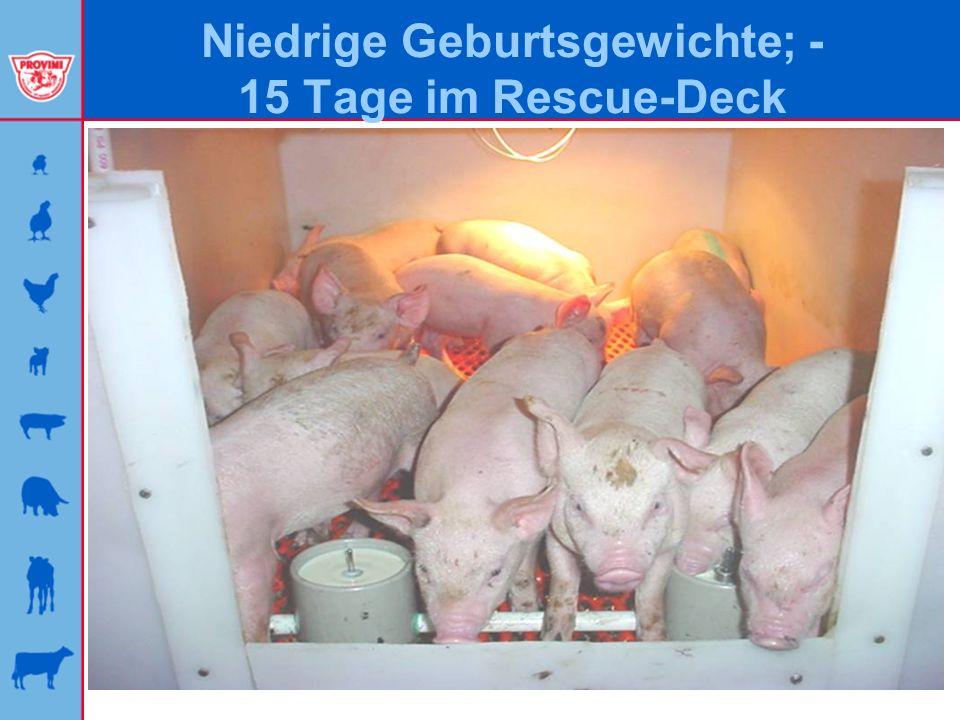 Niedrige Geburtsgewichte; - 15 Tage im Rescue-Deck
