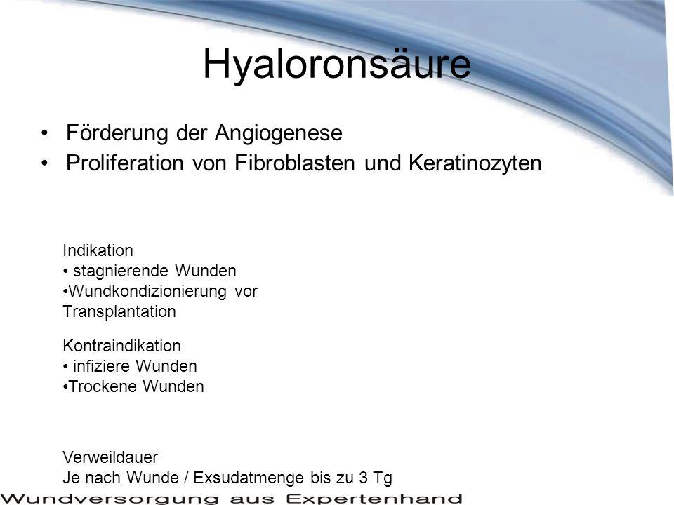 Hyaloronsäure Förderung der Angiogenese