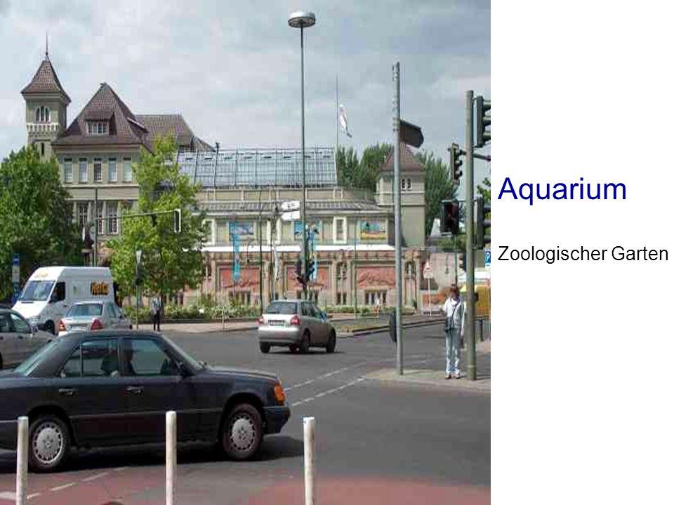 Aquarium Zoologischer Garten