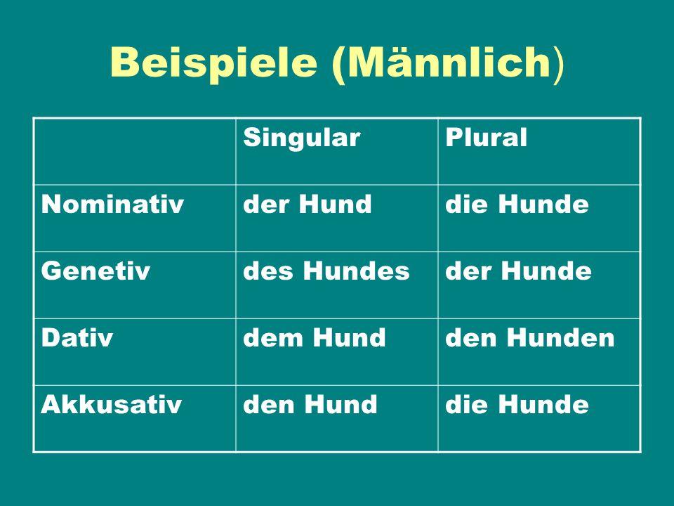 Beispiele (Männlich) Singular Plural Nominativ der Hund die Hunde