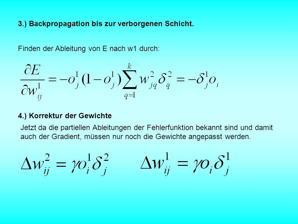 3.) Backpropagation bis zur verborgenen Schicht.