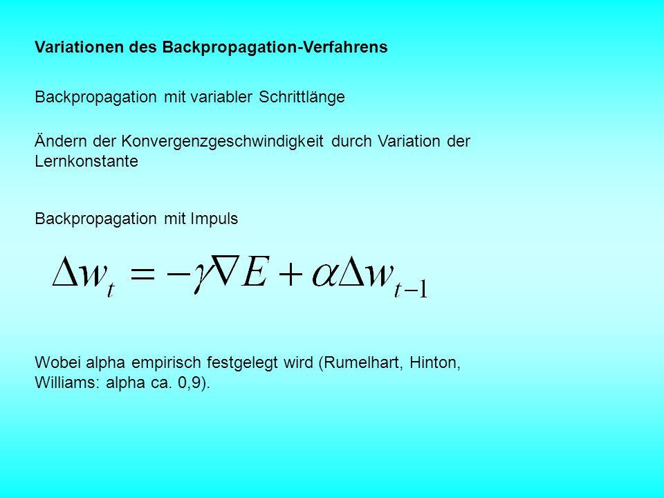 Variationen des Backpropagation-Verfahrens