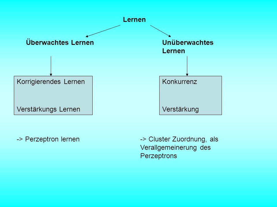 Lernen Überwachtes Lernen. Unüberwachtes Lernen. Korrigierendes Lernen. Konkurrenz. Verstärkungs Lernen.
