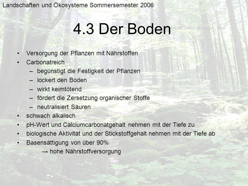 4.3 Der Boden Landschaften und Ökosysteme Sommersemester 2006