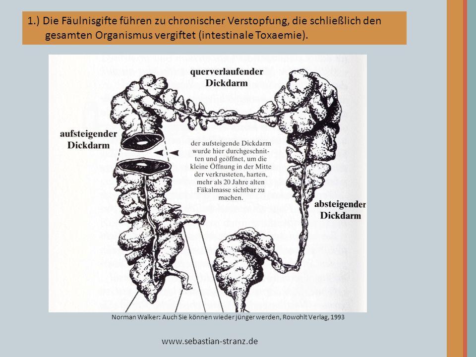 1.) Die Fäulnisgifte führen zu chronischer Verstopfung, die schließlich den gesamten Organismus vergiftet (intestinale Toxaemie).