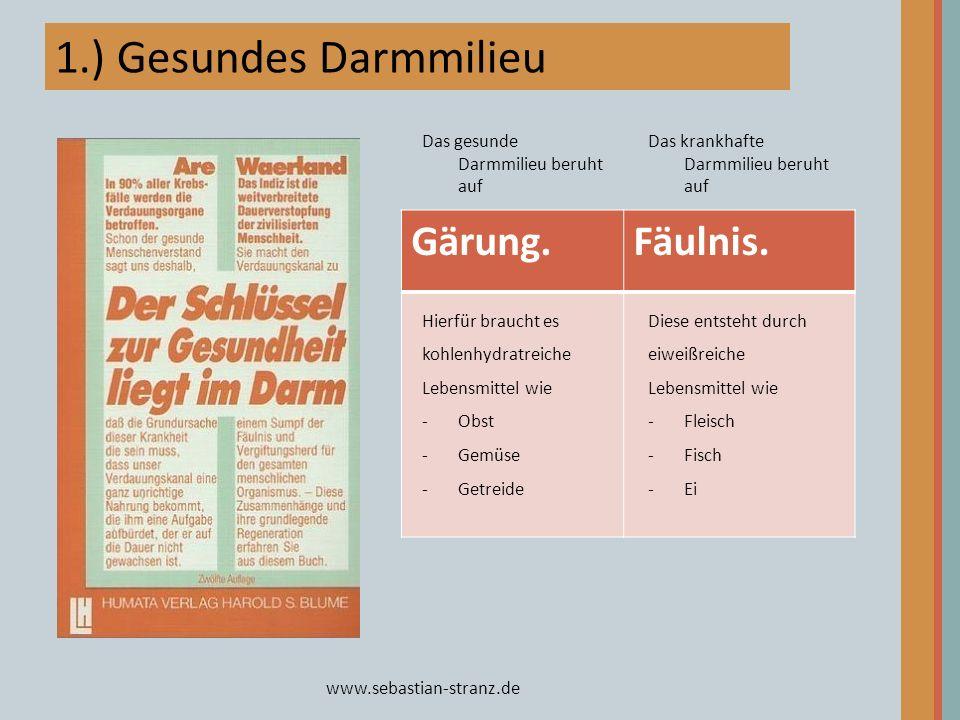 1.) Gesundes Darmmilieu Gärung. Fäulnis.