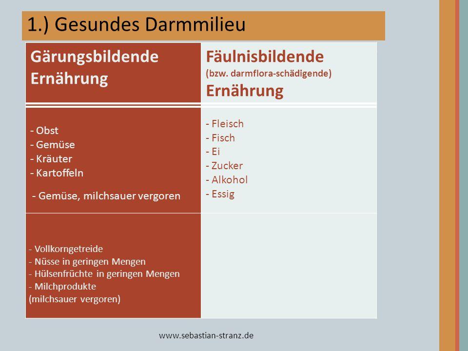 1.) Gesundes Darmmilieu Basische Ernährung Übersäuernde Ernährung