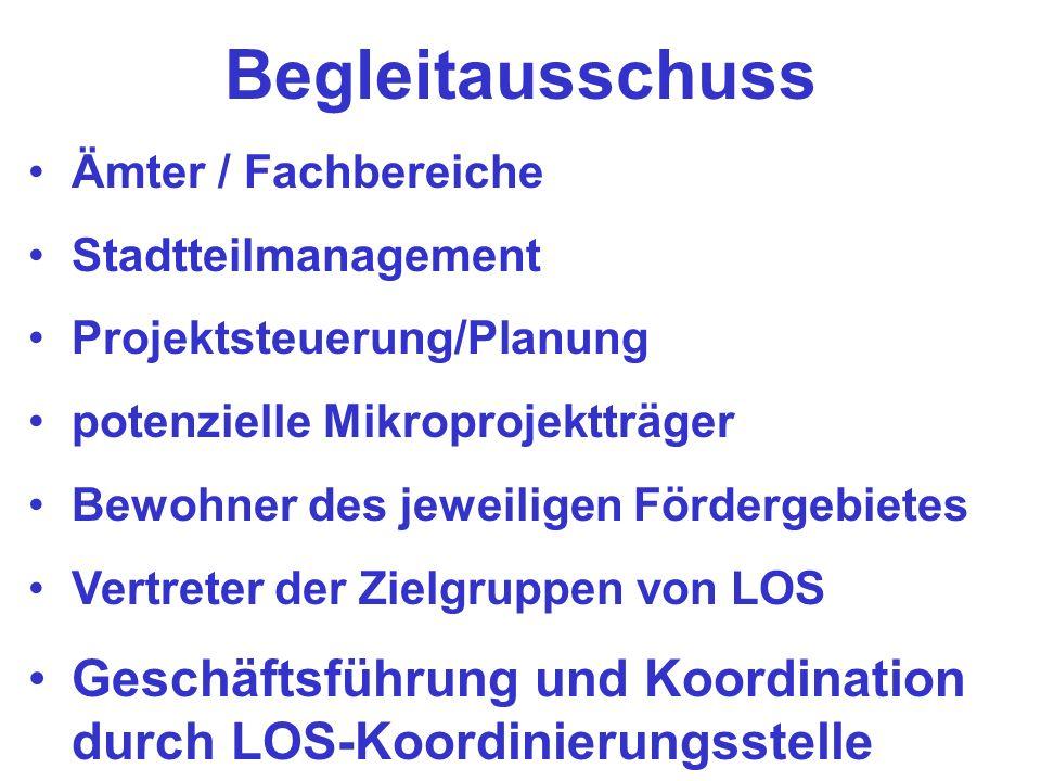 Begleitausschuss Ämter / Fachbereiche. Stadtteilmanagement. Projektsteuerung/Planung. potenzielle Mikroprojektträger.