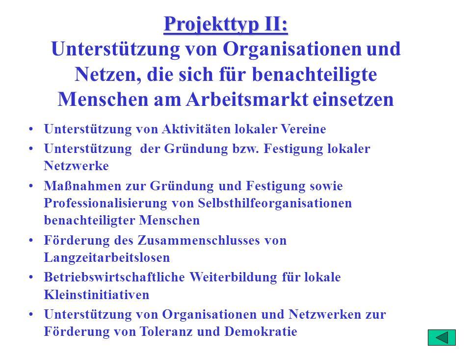 Projekttyp II: Unterstützung von Organisationen und Netzen, die sich für benachteiligte Menschen am Arbeitsmarkt einsetzen